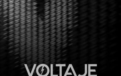 Voltaje, 5º Salón de Arte y Tecnología