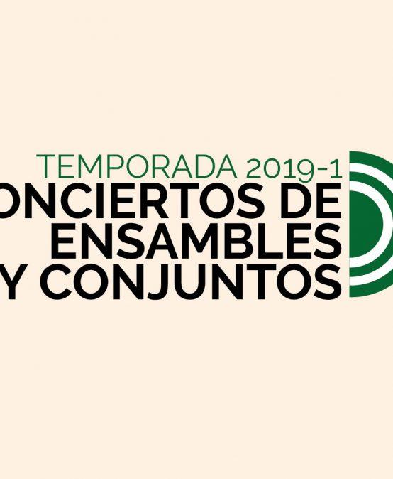 Concierto: Conjuntos de cámara dirigidos por Manuel Cubides