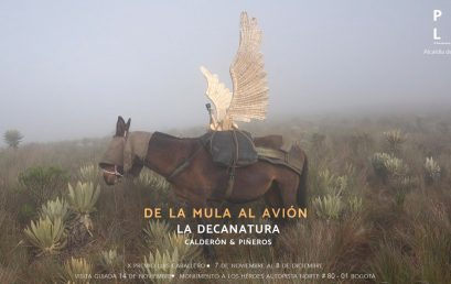 Exposición De la mula al avión de La Decanatura