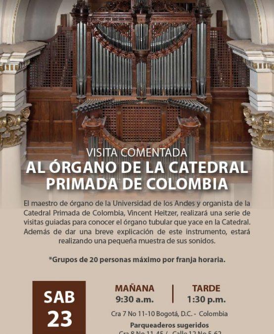 Visita comentada al órgano de la Catedral Primada de Colombia