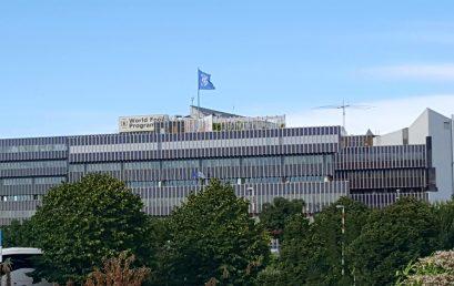 Pasantía en Comunicaciones (Diseño Gráfico y Edición de Video) – Agencia de la ONU
