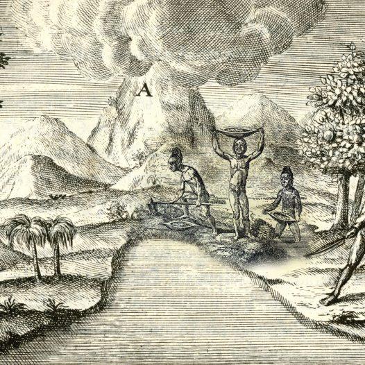 América exótica: la invención de un Nuevo Mundo desde el arte y la literatura