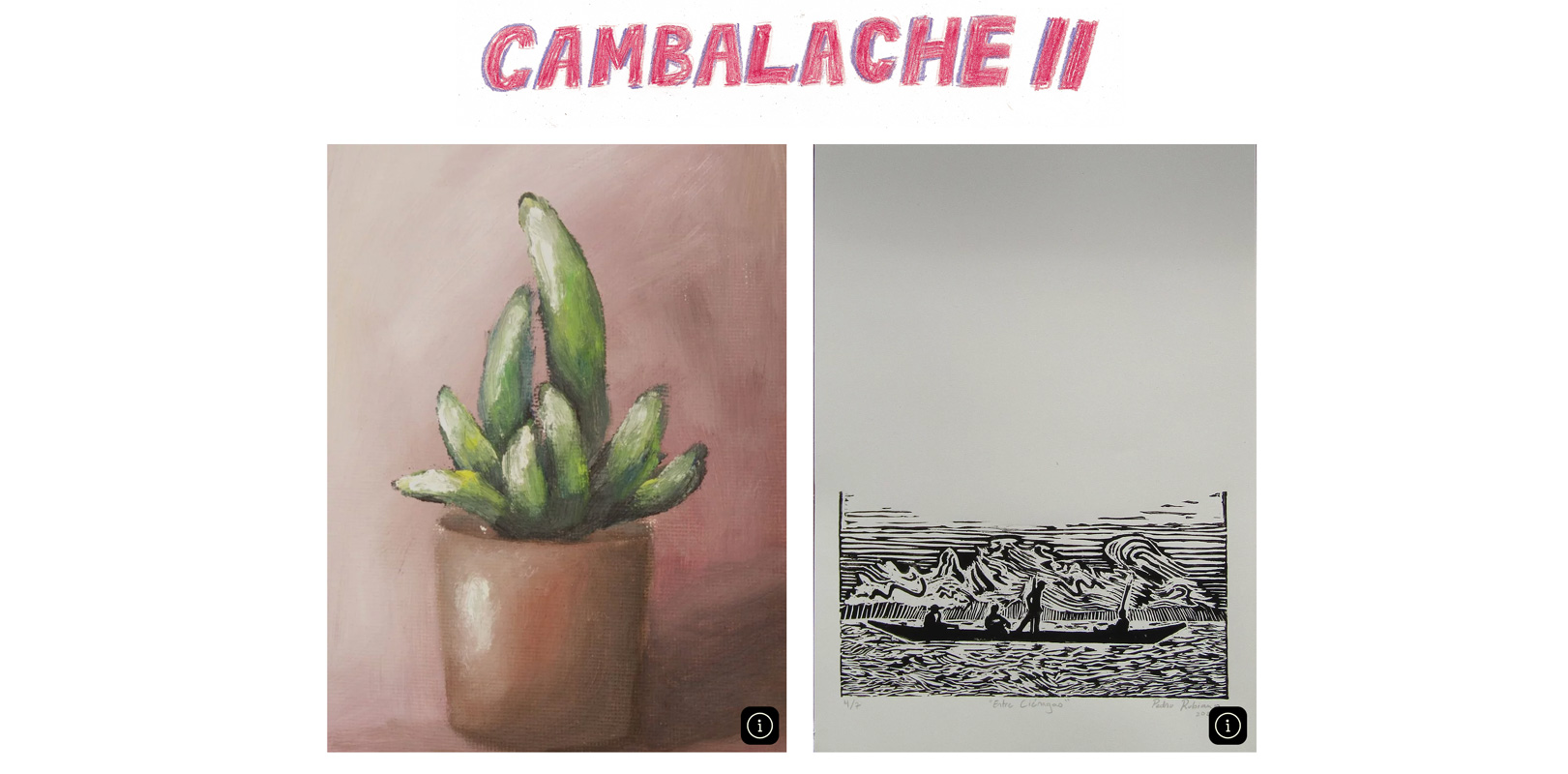 Cambalache II: Subasta apoyo Fiprovidence