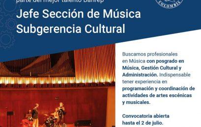 Analista en la Sección de Música – Banco de la República